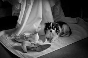 huwelijken-portfolio2-249