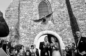 huwelijken1 (210)